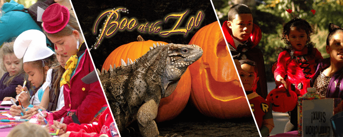Join us at Boo at the Zoo this October!